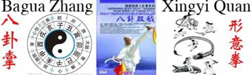 Ba Gua Zhang(Eight Diagram Palm)/Xing Yi Quan形意拳,八卦掌