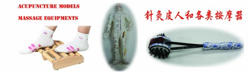 Acupuncture Models & Massage Equipments