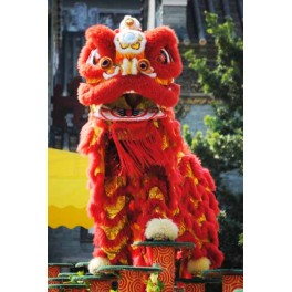 Chinese Lion Dance  complete set  Red size 2