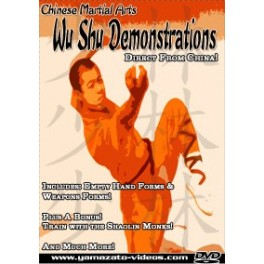 Chinese Martial Arts Wu Shu Demonstrations